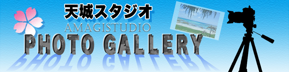 天城スタジオPHOTOギャラリー