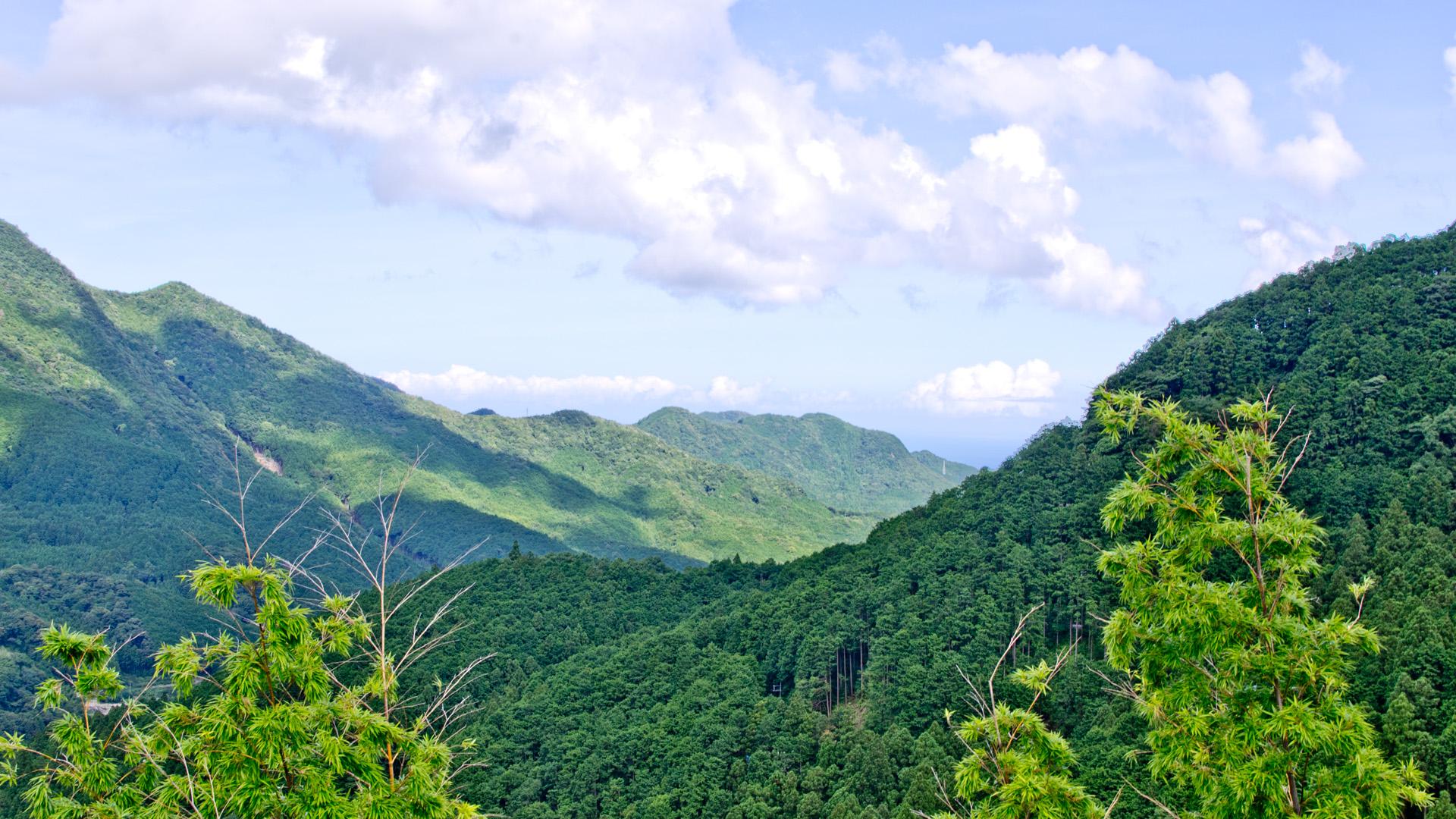 熊野の山系の眺望