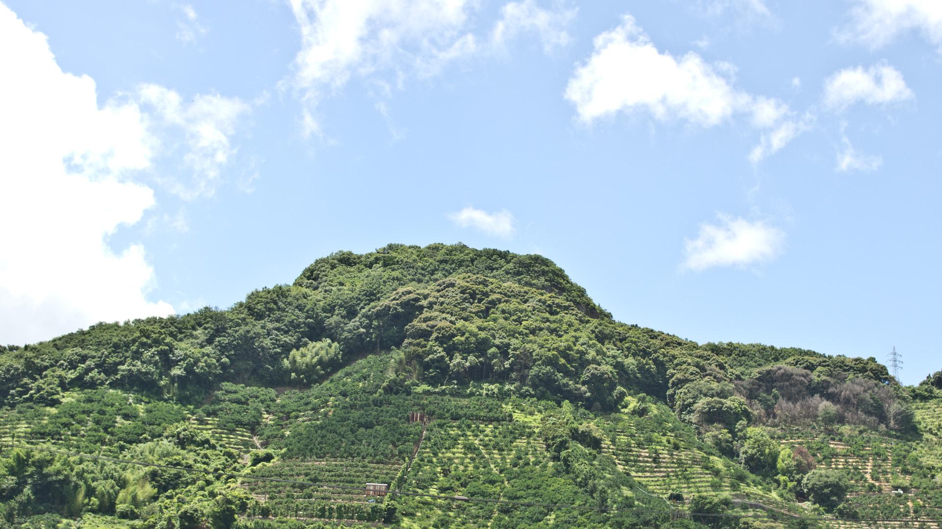 熊野の小山