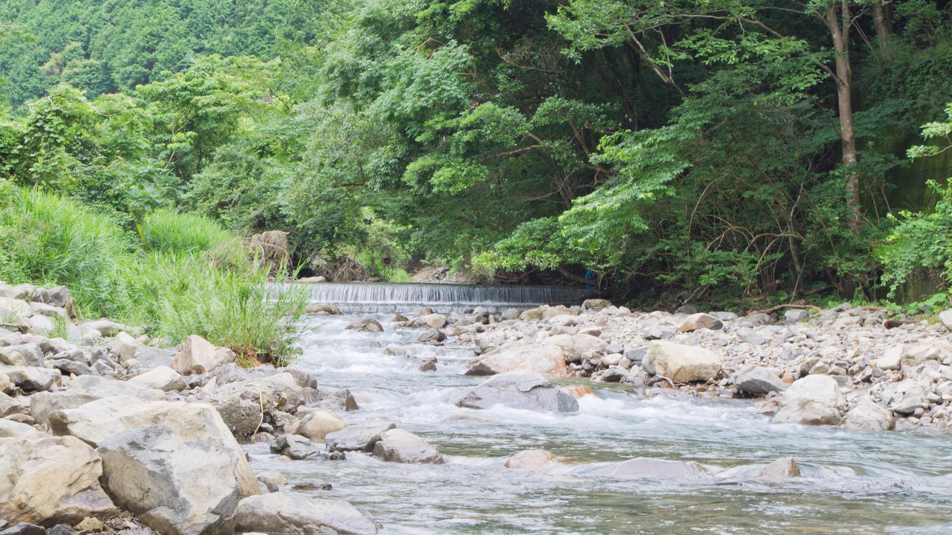 熊野の渓谷